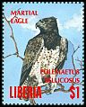 Cl: Martial Eagle (Polemaetus bellicosus) new (1994)