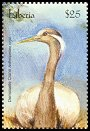 Cl: Demoiselle Crane (Anthropoides virgo)(Out of range)  new (2001)  [2/31]