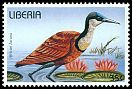 Cl: African Jacana (Actophilornis africanus)(Repeat for this country)  new (1996) 35