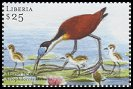 Cl: African Jacana (Actophilornis africanus)(Repeat for this country)  new (2001)  [2/12]