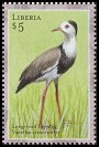 Cl: Long-toed Lapwing (Vanellus crassirostris)(Out of range and no other stamp)  new (2001)  [2/4]