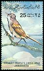 Cl: Greater Whitethroat (Sylvia communis) SG 1194 (1982) 25 [5/33]