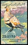 Cl: Black-bellied Sandgrouse (Pterocles orientalis) SG 1196 (1982) 25 [5/33]