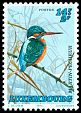 Cl: Common Kingfisher (Alcedo atthis) <<Martin-pe&circ;cheur>>  SG 1365 (1993) 240