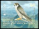 Cl: Lanner Falcon (Falco biarmicus) new (2019)  [11/63]