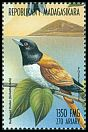 Cl: Rufous Vanga (Schetba rufa)(Endemic or near-endemic)  new (1999)