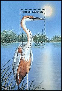 Cl: Goliath Heron (Ardea goliath)(Out of range)  new (1999)