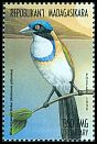 Cl: Pitta-like Ground-Roller (Atelornis pittoides)(Endemic or near-endemic)  new (1999)