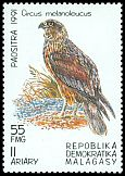 Cl: Western Marsh-Harrier (Circus aeruginosus)(not catalogued)  (1991)