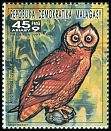 Cl: Marsh Owl (Asio capensis)(not catalogued)  (1991)