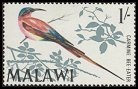 Cl: Southern Carmine Bee-eater (Merops nubicoides) SG 316 (1968) 100 [2/5]