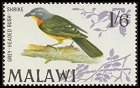 Cl: Grey-headed Bushshrike (Malaconotus blanchoti) SG 317 (1968) 500 [2/5]