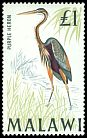 Cl: Purple Heron (Ardea purpurea) SG 322 (1968) 800 [2/5]