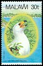Cl: African Fish-Eagle (Haliaeetus vocifer)(Repeat for this country)  SG 675 (1983) 160