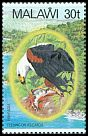 Cl: African Fish-Eagle (Haliaeetus vocifer)(Repeat for this country)  SG 678 (1983) 160