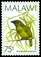 Cl: Green Barbet (Stactolaema olivacea) SG 800 (1988) 70