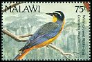 Cl: White-browed Robin-Chat (Cossypha heuglini)(Repeat for this country)  SG 884 (1992) 225