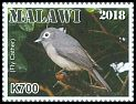 Cl: African Yellow White-eye (Zosterops senegalensis)(Repeat for this country)  new (2018)  [11/43]
