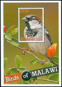 Cl: House Sparrow (Passer domesticus)(Repeat for this country)  SG 1133 (2016) 160 [10/18]