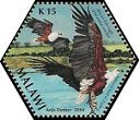 Cl: African Fish-Eagle (Haliaeetus vocifer)(Repeat for this country)  SG 1031h (2004) 75 [3/54]