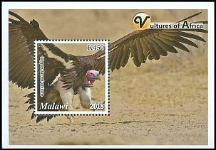 Cl: Lappet-faced Vulture (Torgos tracheliotus)(Repeat for this country)  new (2018)  [11/51]