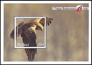 Cl: Western Marsh-Harrier (Circus aeruginosus)(I do not have this stamp)  new (2018)