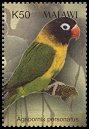 Cl: Yellow-collared Lovebird (Agapornis personatus)(Out of range)  SG 1018e (2003) 150 [2/6]