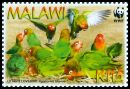 Cl: Lilian's Lovebird (Agapornis lilianae)(Endemic or near-endemic)  SG 1041 (2009) 200 [6/26]
