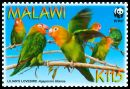Cl: Lilian's Lovebird (Agapornis lilianae)(Endemic or near-endemic)  SG 1042 (2009) 200 [6/26]