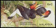 Cl: Rhinoceros Hornbill (Buceros rhinoceros) <<Enggang badak>> (Endemic or near-endemic)  SG 626b (1996) 325 [2/32]