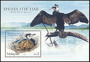 Cl: Great Cormorant (Phalacrocorax carbo) <<Pependang Air>>  SG 1320 (2006) 600
