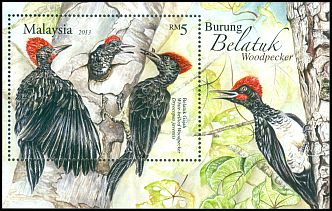 Cl: White-bellied Woodpecker (Dryocopus javensis)(Repeat for this country)  SG 1936 (2013) 750