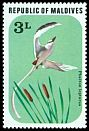 Cl: White-tailed Tropicbird (Phaethon lepturus)(Repeat for this country)  SG 704 (1977) 5