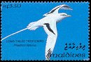 Cl: White-tailed Tropicbird (Phaethon lepturus)(Repeat for this country)  SG 1835 (1993)