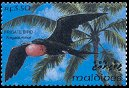 Cl: Great Frigatebird (Fregata minor)(Repeat for this country)  SG 1836 (1993)