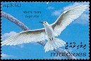 Cl: White Tern (Gygis alba)(Repeat for this country)  SG 1838 (1993)