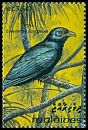 Cl: Asian Koel (Eudynamys scolopacea)(Repeat for this country)  SG 1848 (1993) 60