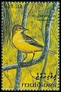 Cl: Yellow Wagtail (Motacilla flava)(Repeat for this country)  SG 1852 (1993)