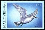 Cl: White Tern (Gygis alba)(Repeat for this country)  SG 3279 (2000)