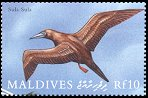Cl: Red-footed Booby (Sula sula)(Repeat for this country)  SG 3292 (2000)