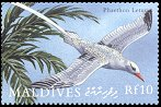 Cl: Red-billed Tropicbird (Phaethon aethereus)(Out of range)  SG 3294 (2000)