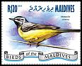 Cl: Grey Wagtail (Motacilla cinerea)(I do not have this stamp)  new (2014)