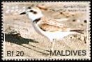 Cl: Snowy Plover (Charadrius alexandrinus) SG 4094 (2007)  [4/16]