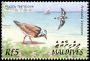 Cl: Ruddy Turnstone (Arenaria interpres)(Repeat for this country)  SG 3668 (2002)