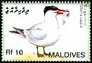 Cl: Caspian Tern (Sterna caspia)(Repeat for this country)  SG 4091 (2007)  [4/16]