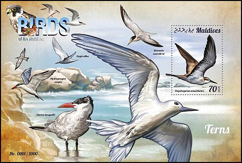 Cl: Bridled Tern (Sterna anaethetus)(I do not have this stamp)  new (2015)