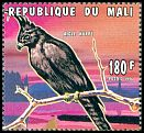 Mali <<Aigle hupp&eacute;>> not catalogued (1996)