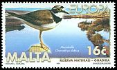 Cl: Little Ringed Plover (Charadrius dubius) <<Monakella>>  SG 1098 (1999) 200