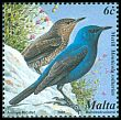 Cl: Blue Rock-Thrush (Monticola solitarius)(Repeat for this country)  SG 1218 (2001) 85