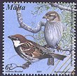 Cl: Spanish Sparrow (Passer hispaniolensis) SG 1221 (2001) 85 [1/10]